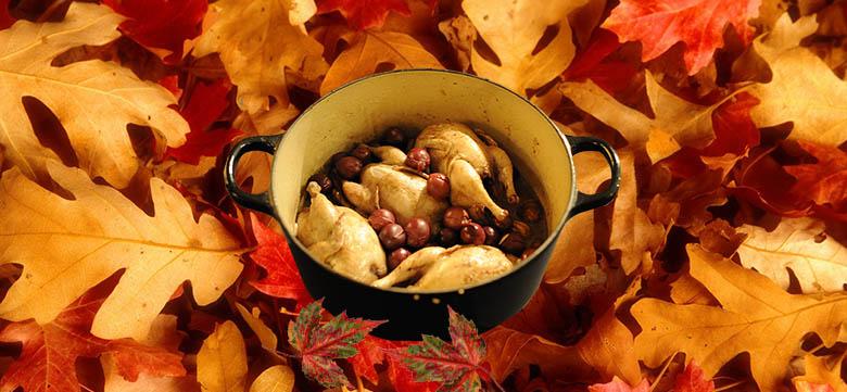 cailles fruits automne