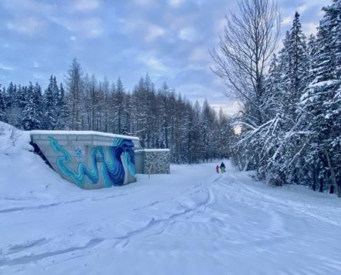 VisionArtFestival, Crans-Montana, 2021